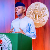See What Vice President, Osinbajo Said To European Union About Nigeria Gas Projects