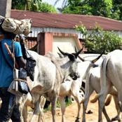 CSO Ngbo Clan Narrates How Herdsmen Killed 15 Persons & Burnt Down 70 Houses In Ebonyi State