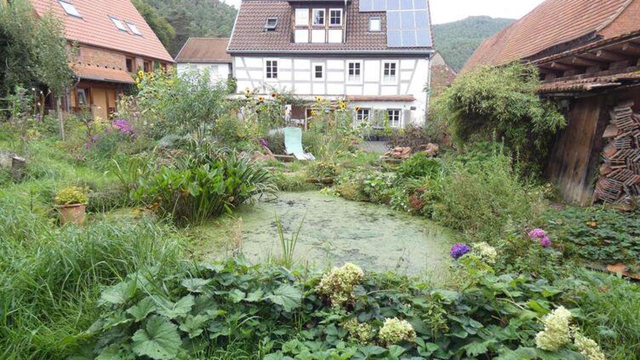Ein preisgekrönter Garten und Ort der Vielfalt - Erfweiler