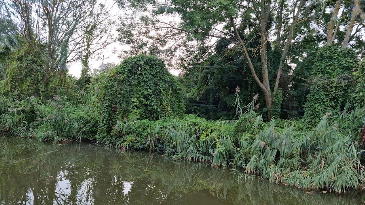 Vigilance sécheresse sur les cours d'eau en Moselle