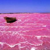 Il existe un lac rose au Sénégal