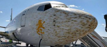 Opinion: Is This How Windscreen of Aircrafts Are cleaned When Dirty? Check Out How Its Done
