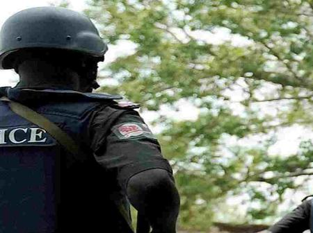 Police Arrest Immigration Officer, 5 Others For Allegedly Stealing 164 Cows
