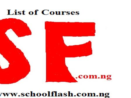 List of Courses Offered in Nigerian Army Institute of Technology and Environmental Science (NAITES)