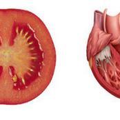 Voici 8 aliments qui soignent les organes auxquels ils ressemblent