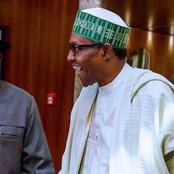 Jonathan Championed Peaceful Transition in 2015 - Buhari's Minister