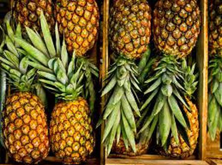 Benefits of Pineapple for Health, Skin, and Hair.