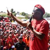 Malema Challenges Zimbabweans To Go Back Home
