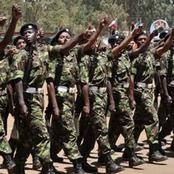 What Happens During the KDF Training Period After Recruitment?