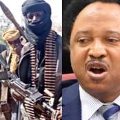 """Political Thugs Afraid Of Bandits, Rushed To Leave Town Before It's Dark"" — Senator Shehu Sani"