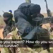 Zamfara Bandits Demands Buhari Visit Them In The Forest For Dialogue As They Brandish Weapons