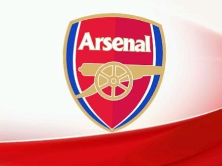 Done deal: Arsenal Women have signed Wolfsburg defender, Noelle Maritz