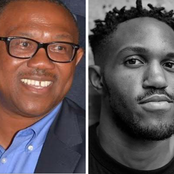 Meet The Only Son Of Peter Obi, Oseloka Gregory Obi Who Is A Hollywood Actor (Photos)