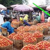 After The Blockage Of Food Supply To The South, See The Reaction Of Northern Tomato Farmers!