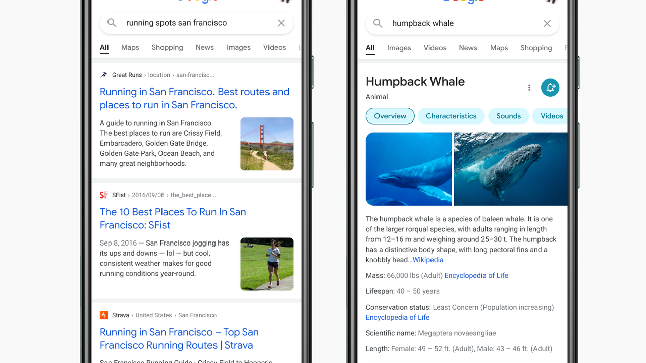 Google revamps Mobile Search to make it easier to read and to allow the users to focus on the information in a better way
