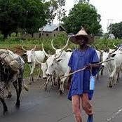 Another South-South Governor Bans Illegal Fulani Herders Operation