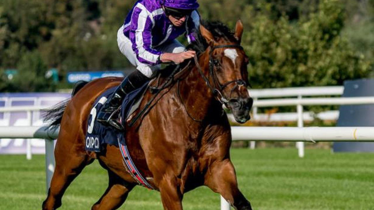 Aidan O'Brien discusses his expected Breeders' Cup entries