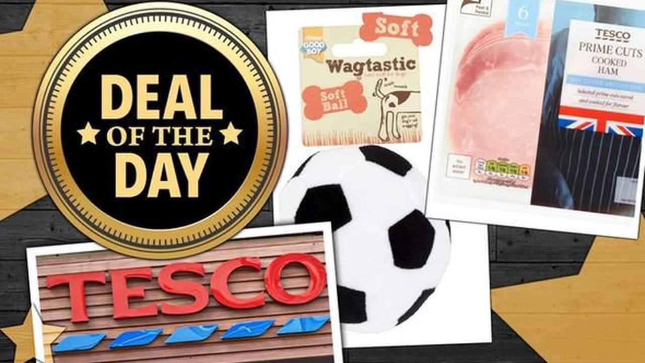 DEAL OF THE DAY: Tesco slashes 50 percent off food and pet toys